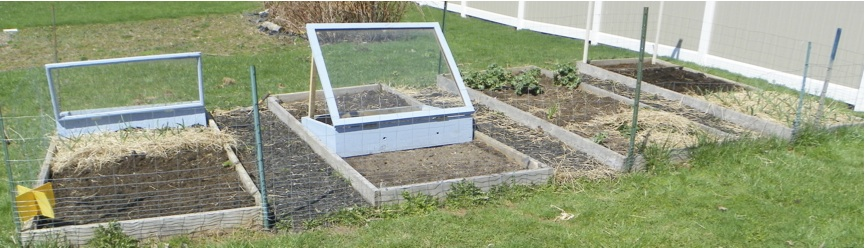Upgrades: Mulched walkways, fitted cold frames, and straw weed cover.